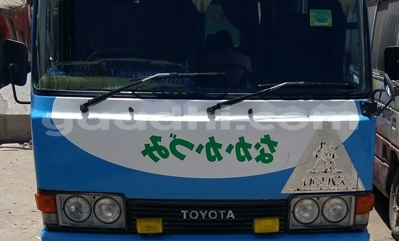 Buy Toyota Coaster Blue Car in Hargeysa in Somaliland