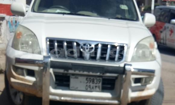 Buy Toyota Prado White Car in Hargeysa in Somaliland