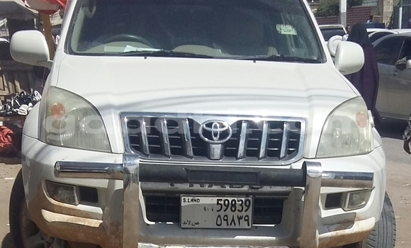 Buy Toyota Land Cruiser White Car in Hargeysa in Somaliland