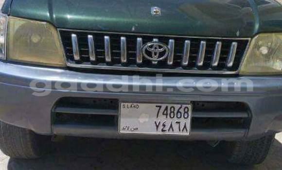 Buy Toyota Prado Green Car in Hargeysa in Somaliland
