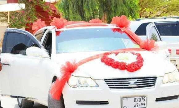 Buy Toyota Mark X White Car in Hargeysa in Somaliland