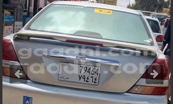 Buy new and used Nissan Fuga Silver Car in Hargeysa in Somaliland