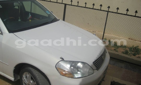 Buy Nissan Fuga Black Car in Mogadishu in Somalia