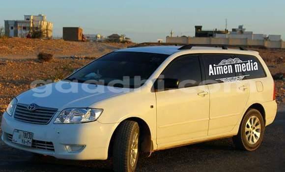 Buy Toyota Corolla White Car in Hargeysa in Somalia